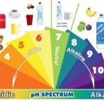 Here's The Truth Of An Alkaline Diet And Why Should You Trust It And Start It Today