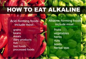 alkaline food - body