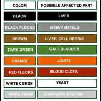 Ion Cleanse Foot Bath Color Chart : What Does The Color Change in the Water Mean?
