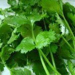 Removing Heavy Metals From Your Body With Chlorella And Cilantro
