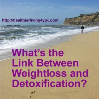 The link between Weight Loss and Detoxification