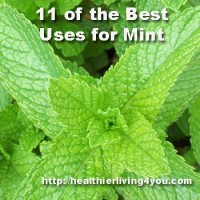 11 of the Best Uses for Mint