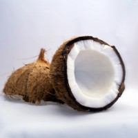 The Fuss About Coconuts